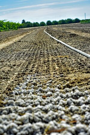 Salt soil crust caused by the leaching on the field Reklamní fotografie