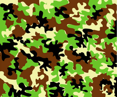 camouflage background Stock Vector - 3210157