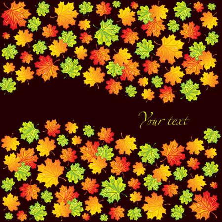 Maple leaves background Stock Photo - 5568984