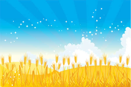 agriculture field: Wheat field illustrated