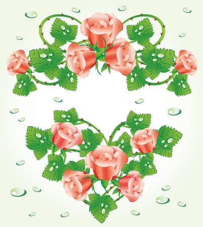 Rose design elements (vector) Stock Vector - 8815114