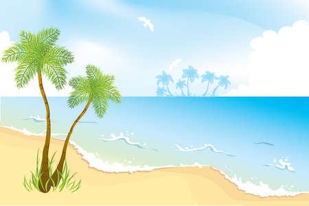 Ocean coast with palms Vector