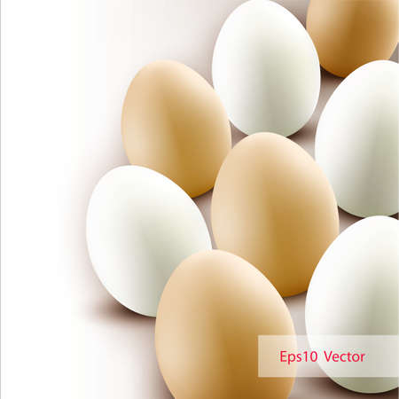 Chicken eggs background   Vector Stock Vector - 12907659