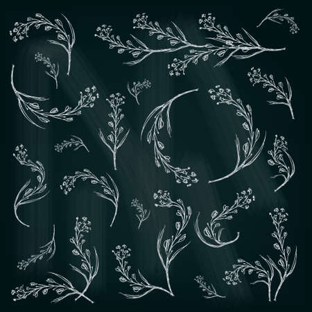 illustrated: Spring floral illustrated graphic set for your design