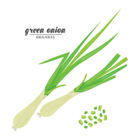 Cartoongreen onion. Ripe vehetables. Vegetarian delicious. Eco organic food. Flat vector design, isolated on white background.