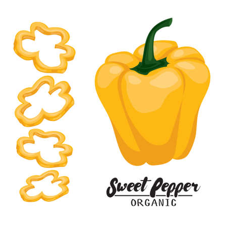 rational: Cartoon sweet pepper. Ripe red vegetable. Vegetarian delicious. Eco organic food. Flat vector design, isolated on white background.