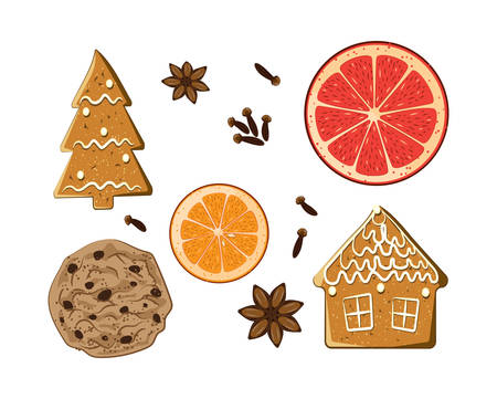 Christmas holiday sweets set. American cookie, figure gingerbread,grapefruit, carnation and anise star isolated on white background. Aromatic vector illustration. Xmas condiment collection.