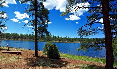 Woodland lake Reklamní fotografie
