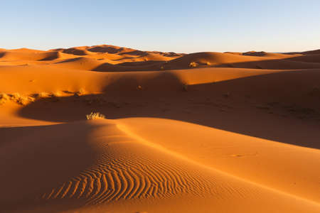 las grandes dunas de arena de Erg Chebbi, Marruecos, ofrecen una vista increíble de las olas y las formas y los colores dorados, rojos y naranjas cambiantes durante el anochecer y el atardecer Foto de archivo