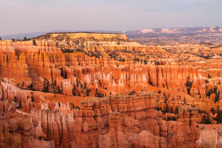 Great spires, also called hoodos, carved away by erosion in Bryce Canyon National Park, Utah, USA, glow in golden colors during sunset. Stok Fotoğraf