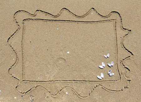 Sand frame with marine shelly butterflies
