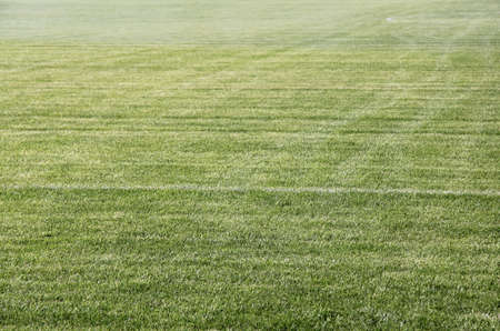 green grass field for sport games in the open air