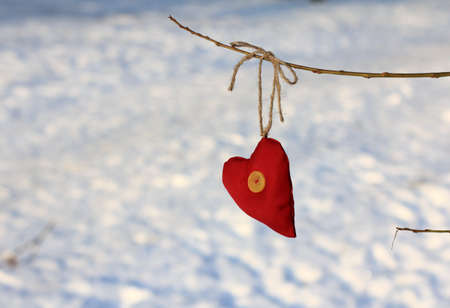 lonely heart: A lonely heart waiting for a miracle in winter park