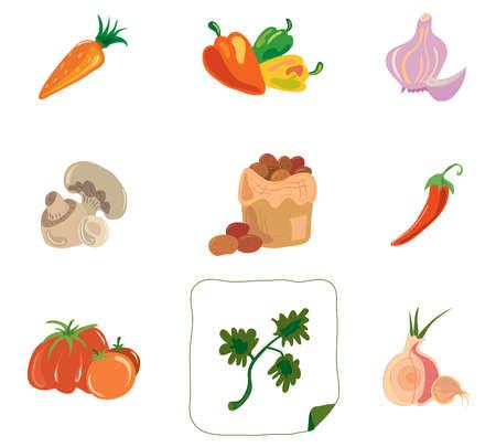 seasonings: collection of vector illustrations vegetables and seasonings