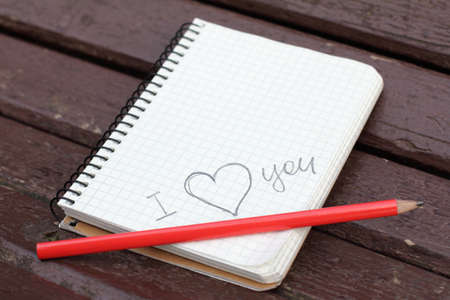 declaration: declaration of love written in pencil notebook