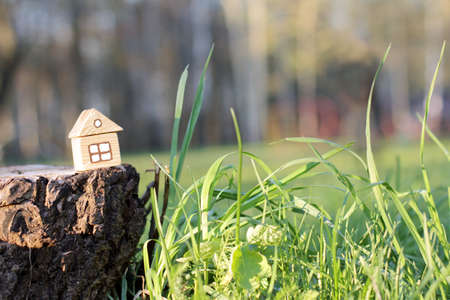 small house stands on the border with wildlife