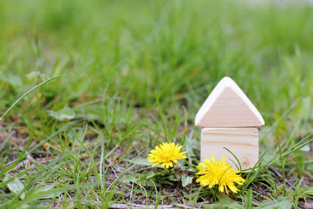 grass plot: concept of a wooden house on a plot with grass and flowers Stock Photo