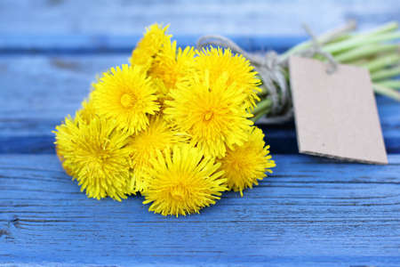 bouquet of dandelions on the sunny blue bench Stock Photo
