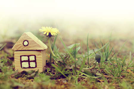 ownership and control: old retro idea of home in nature