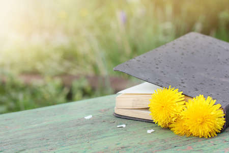 closed book: closed book paper with a flower bookmark on a park bench