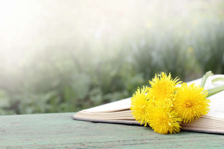 open book with a bookmark of spring flowers in nature Stock Photo