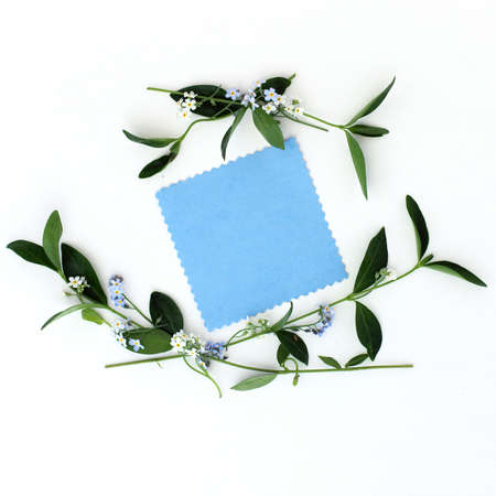 congratulatory: flat lay background with spring flowers as a frame and blank sheet for congratulations top view congratulatory background with flowers