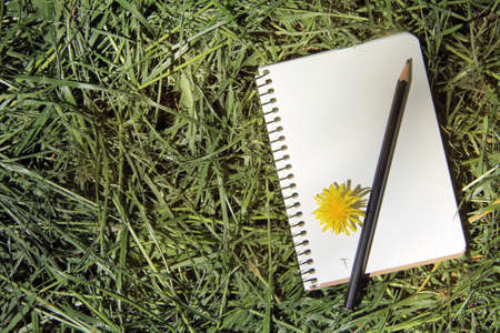 memo pad: memo pad and a pencil lie on freshly cut grass top view  draw and write during the holidays Stock Photo