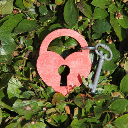 dedicate: heart symbol in the form of a padlock and key on rare foliage background top view  key to heart