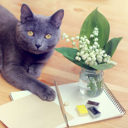 paint brush and a bouquet of lilies of the valley on a background of a cat  cat in still life