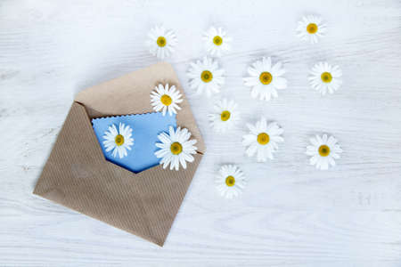 Chamomile flying out of an open envelope with a message, top view  flower mail