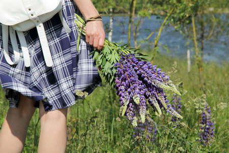 bouquet of wild flowers in a hand of the girl in a checkered summer dress  summer nature walks