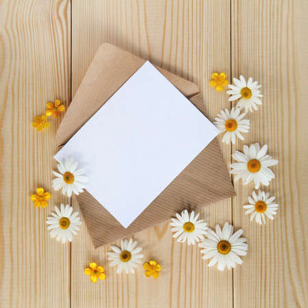 background with daisies and a flat layout about an open letter to the unfilled card top view  letter with floral mood