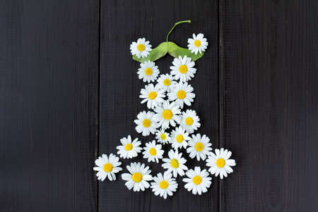 idea a summer dress of daisies on a green maple seeds hanger  summer wardrobe with fashionable floral dress