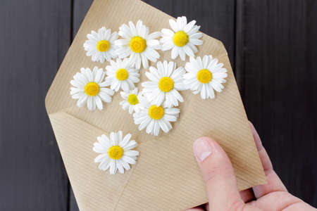 wishes in the form chamomile flowers fly out of open envelope in his hand  flowers from followers Stock Photo