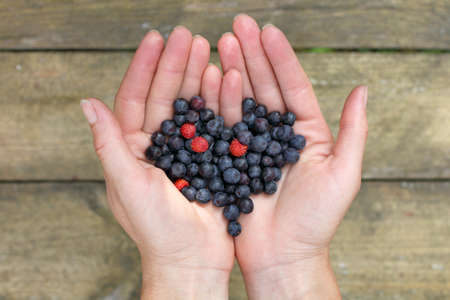 Heart Symbol Of Of Freshly Berries Blueberries In The Hands Of