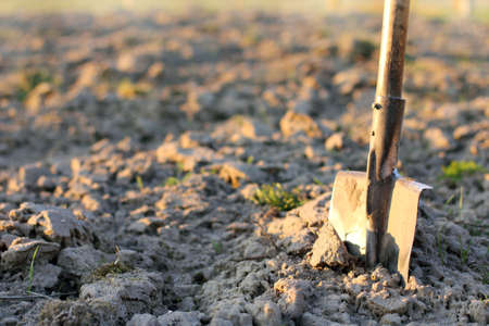 hole in one: old shovel to dig on the background of the field in the sunset  working tool the test of time