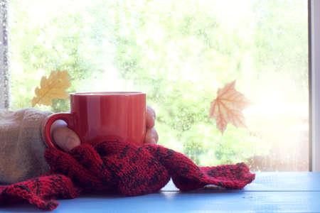 雨のしずくと落ち葉を持つウィンドウにスカーフで赤カップを持つ手ホット ・秋のドリンク 写真素材
