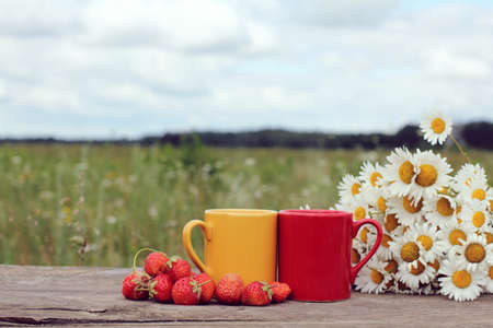 tea breaks: Two mugs with a drink, berries and a bouquet of chamomiles on the table summer breakfast in the open air