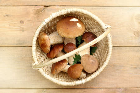 white boletus in a wicker basket on a wooden table top view  forest gifts of the first category Stock Photo