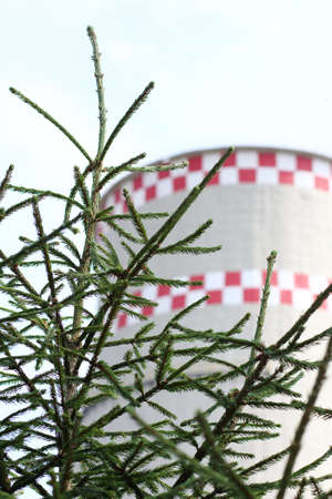 young green Christmas tree on a background of a huge heat station pipe  environmental issues