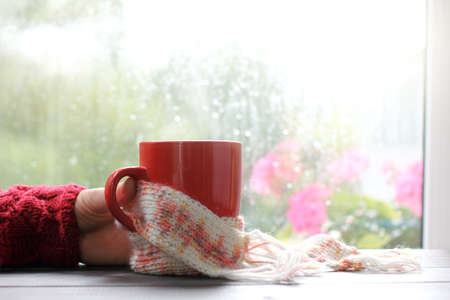 hand holding red mug wrapped in pink scarf on window background after rain  autumn mood warming atmosphere