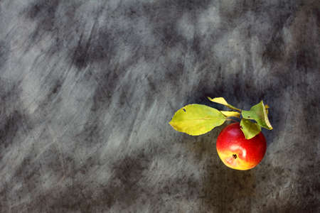fresh ripe apple with leaves on a background of school chalkboard  fruits and education Stock Photo