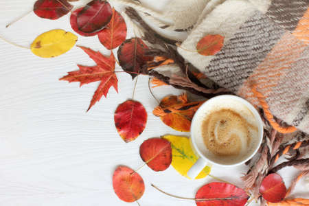 flat layout with a cup of frothy cappuccino, leaves and a blanket top view  autumn coffee break Stock Photo
