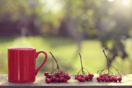 晴れた日に庭ホット テーブルの上ナナカマドの枝と赤いマグカップ屋外で飲む 写真素材