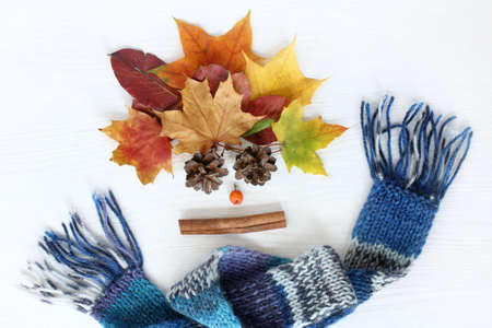 bouquet of leaves bumps and cinnamon with rowan in a warm blue scarf  bright autumn holidays Stock Photo