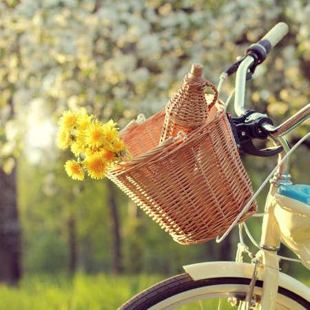 Weidenfahrradkorb mit Blumen und eine Flasche Getränk auf Hintergrund der blühenden Apfelbäume / Fahrradtour für Frühlingspicknick