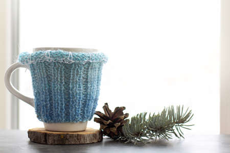 cup in a knitted sweater on a table next to a cone and a fir branch against a window / winter hot drink Banque d'images