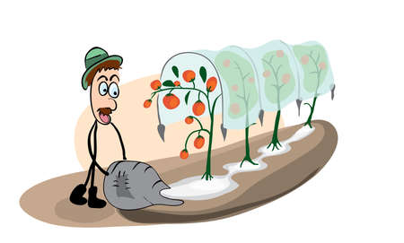 surprised gardener on the background of a bed with fast-growing tomatoes having risen up their greenhouse nitrogen fertilizers in agriculture Illustration