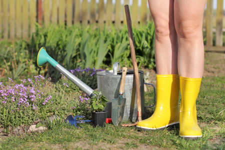gardener in yellow boots and garden tools near the flowerbed in the garden. spring planting flower seedlings Banco de Imagens