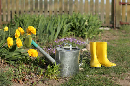 watering can for watering on the background of flowers and yellow boots on the flowerbed. hobby and relaxation in the garden